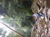 Imgp0890